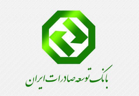 بانک توسعه صادرات، پشتیبان اعتباری صادرات ایران
